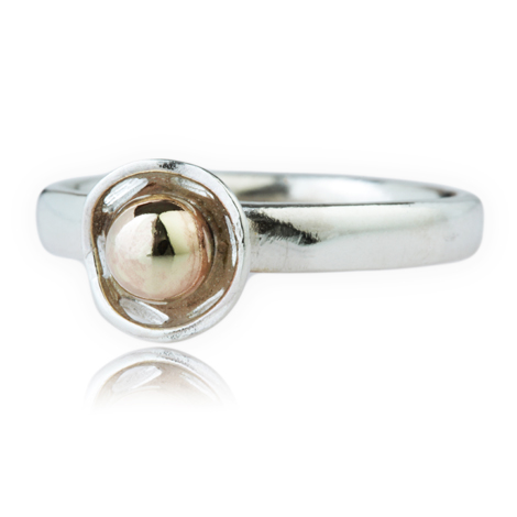 Gold and Silver Ring | Image 1
